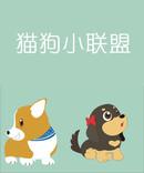 猫狗小联盟漫画