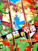 番茄的收获 第1卷